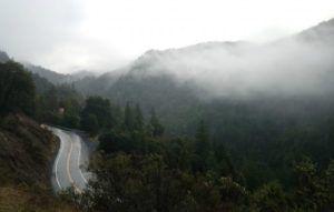 Mendocino County, California hills