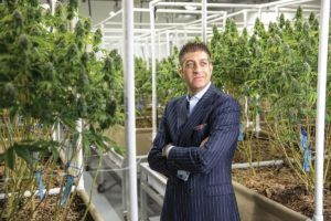 cannabis expansion, Cannabis companies looking to grow have more options than ever