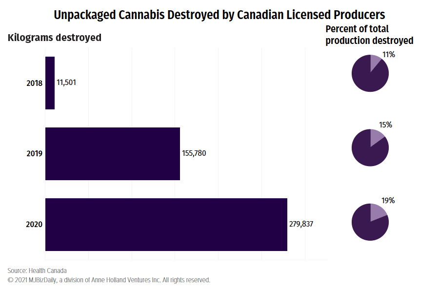 Canadian cannabis destruction, Canadian producers destroyed over 500 tons of cannabis since 2018