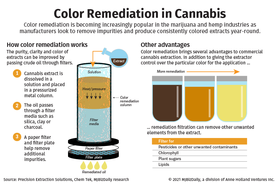 A graphic showing the process of color remediation in cannabis.