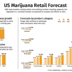 Chart showing the long-term forecast for the US marijuana market in 2022.
