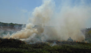 Image of a fire in a field