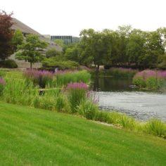Image of Scott's Miracle-Gro corporate headquarters